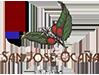 San José Ocaña